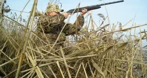 Охота в Новополоцке Полоцке