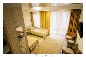 Double room deluxe with 2 separate beds